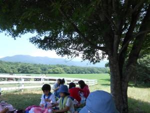 ガールスカウト 夏キャンプ2013